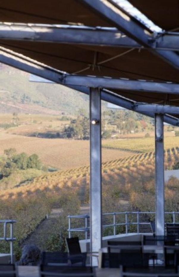 Guardian Peak Wines, Stellenbosch