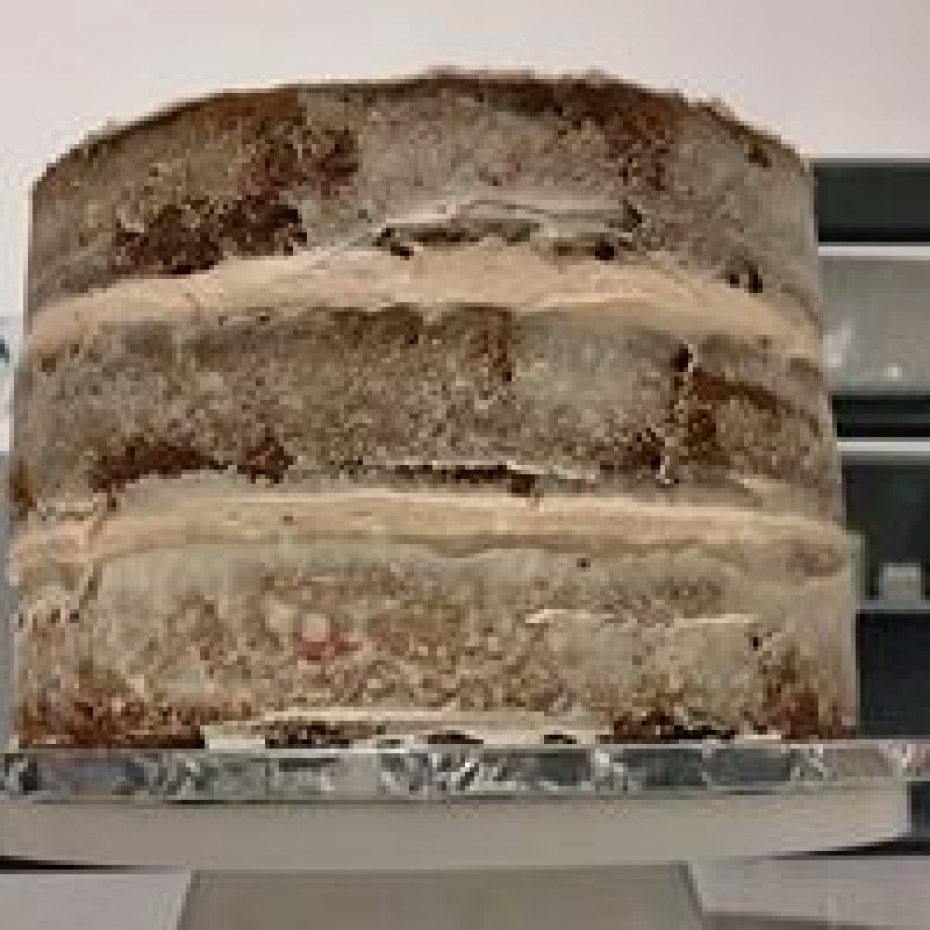 Triple Layered Cakes