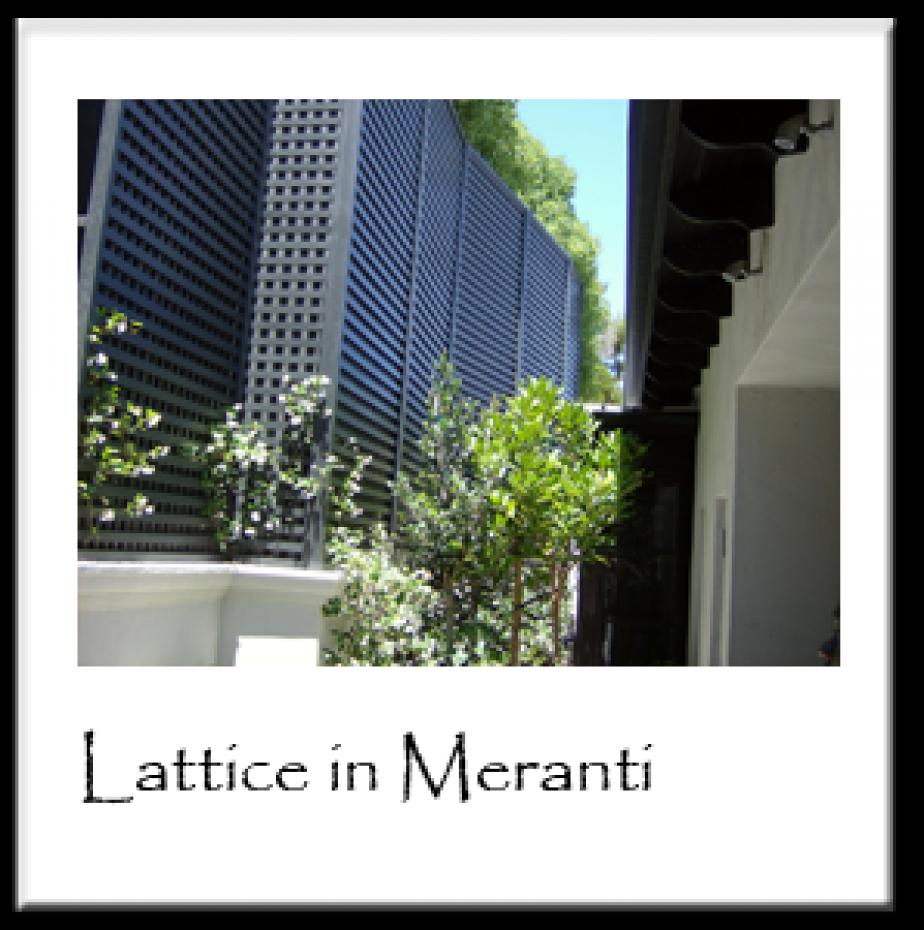 Lattice in Meranti
