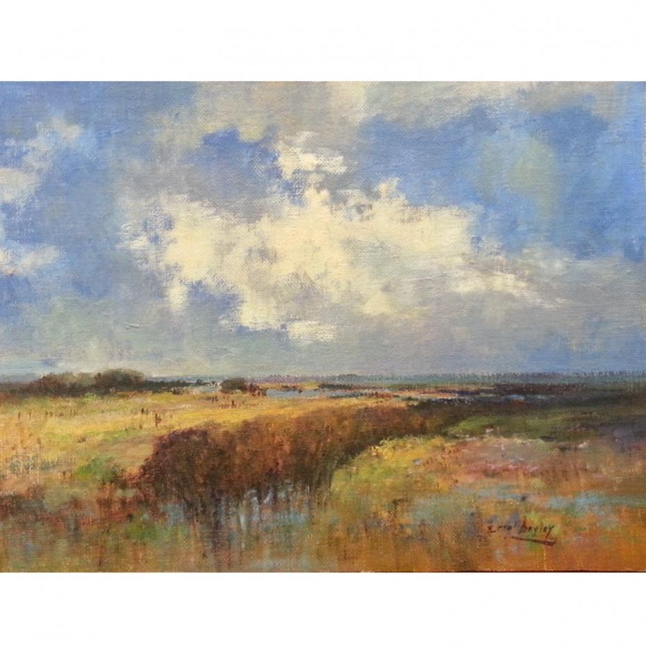 Errol Boyley - Landscape