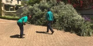 Garden Refuse Removals