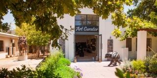 Art Curator Outside
