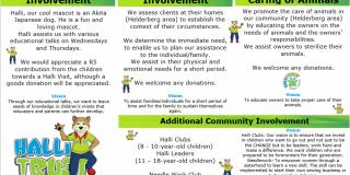Halli Trust Information Pamplet 2