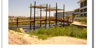Bridge in Balau
