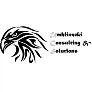Umhlinzeki Consulting & Solutions
