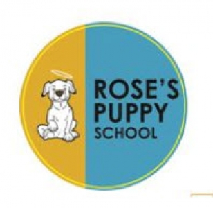 Rose's Puppy School